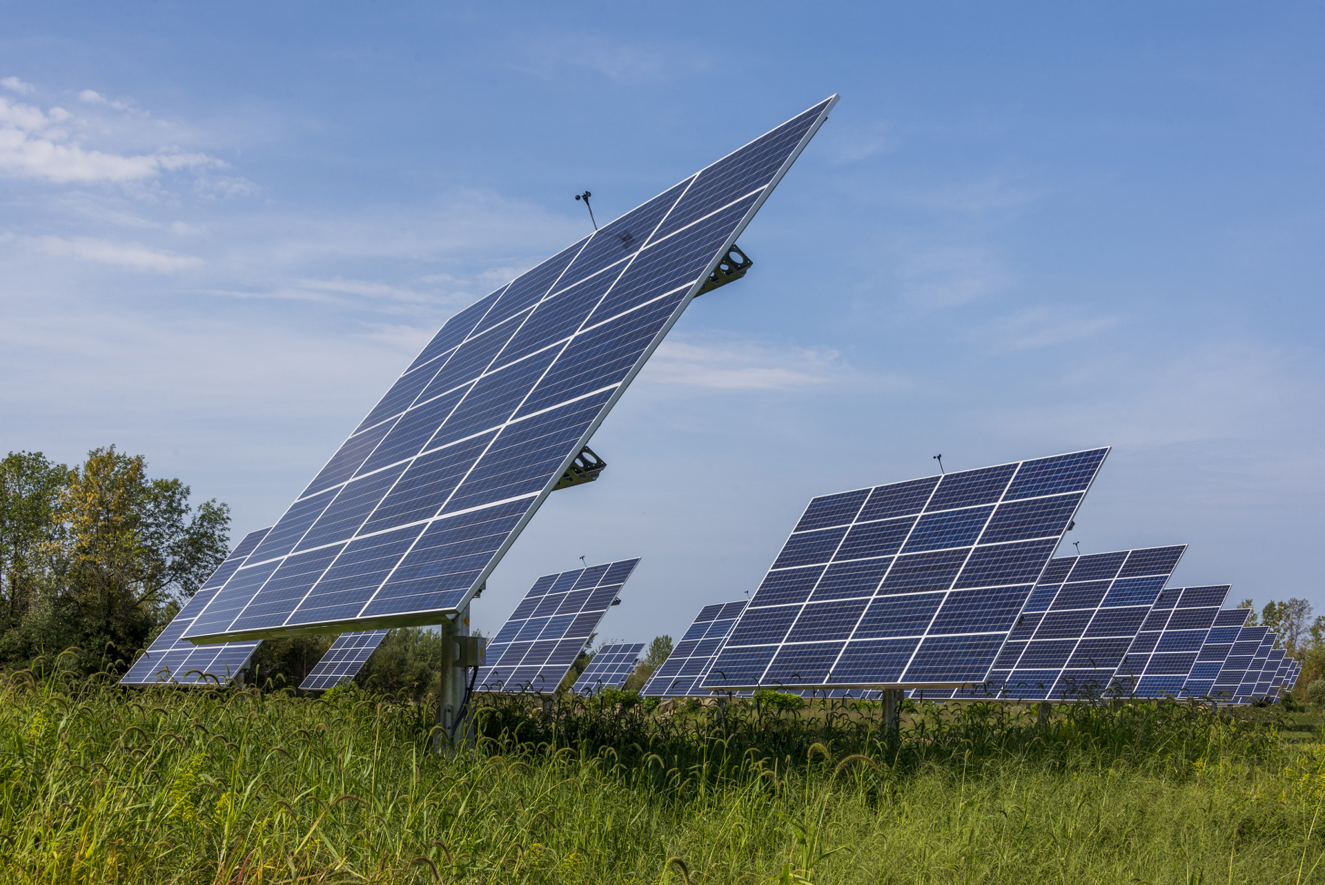 Commercial solar panels in a field